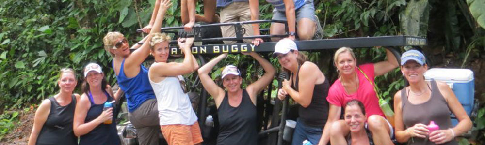 Vacation buggy group