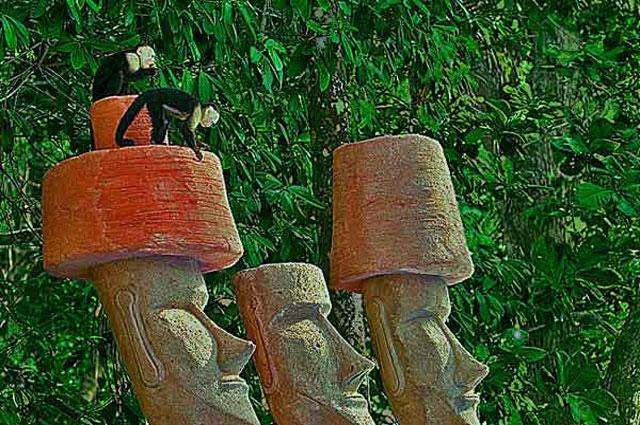 Discovery Beach House moai with monkeys