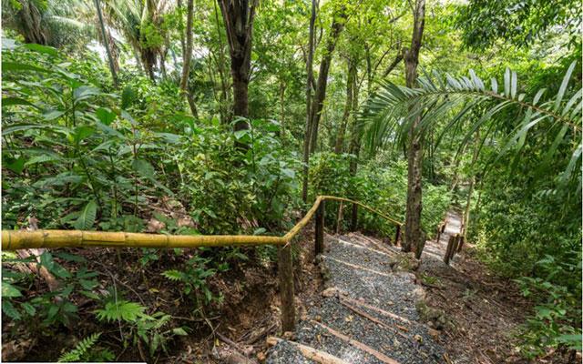 Casa-Pura-Paz-Garden-path