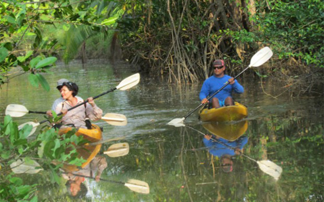 Manuel Antonio Vacation Rentals: Mangrove Kayak 2