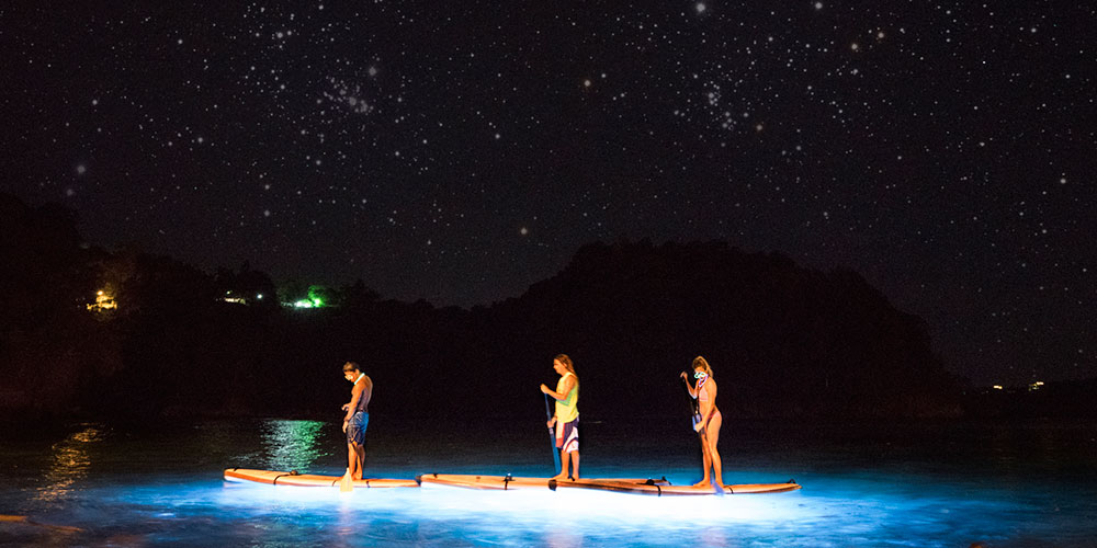Group paddle boarding at night