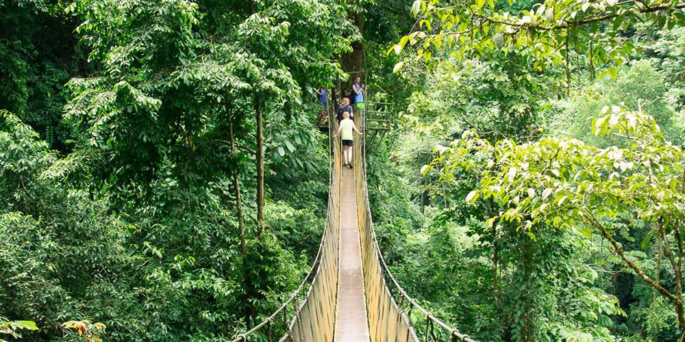 Long suspension bridge